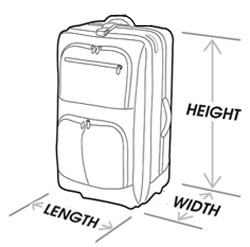 Cabin Baggage ( International routes, Business Class)